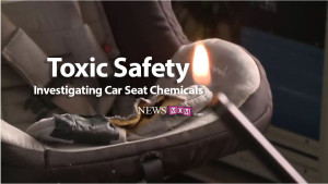 Toxic Safety